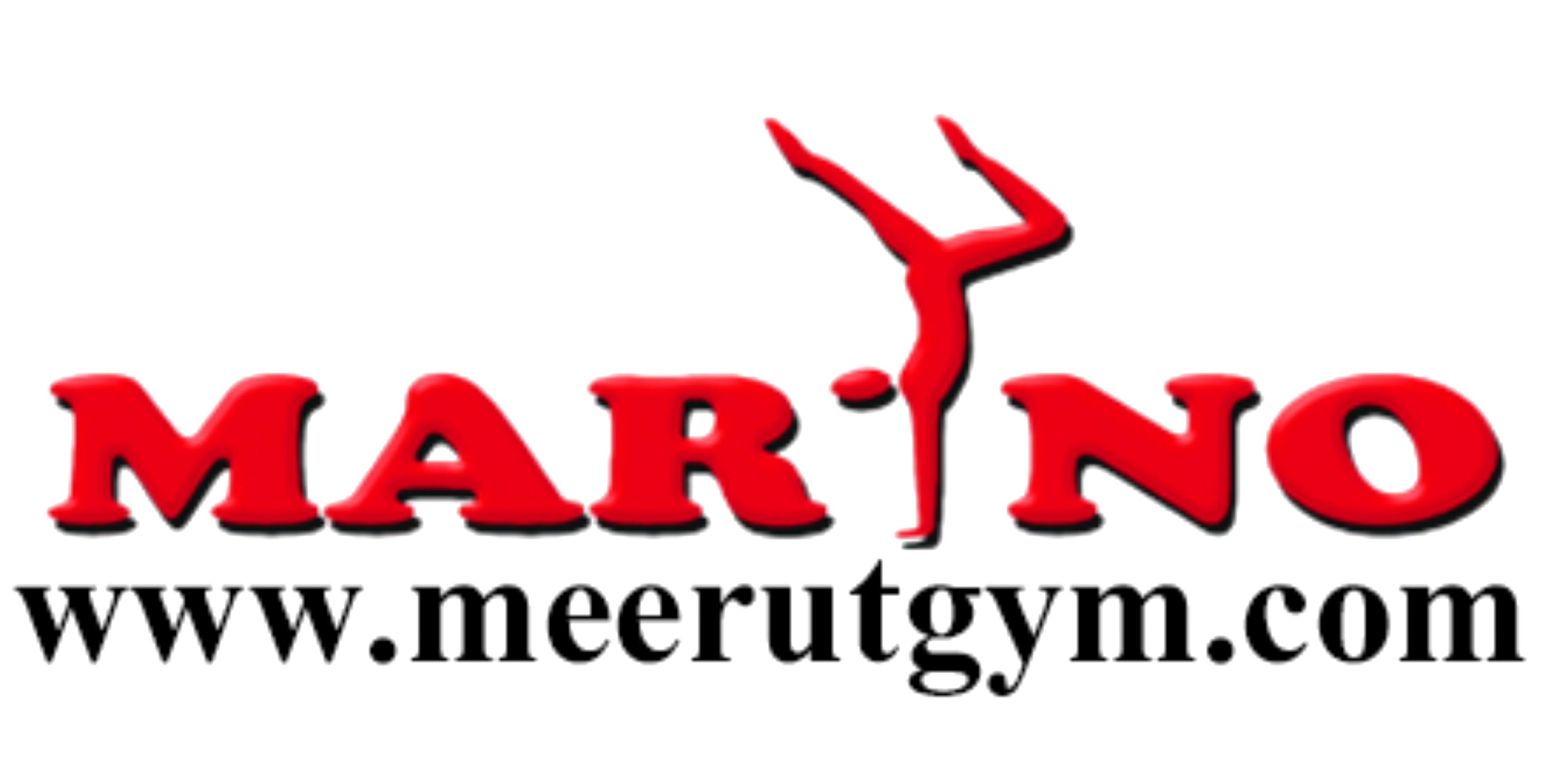 Gymnastic Sports Goods Equipment Manufacturers Suppliers India Meerut Gym